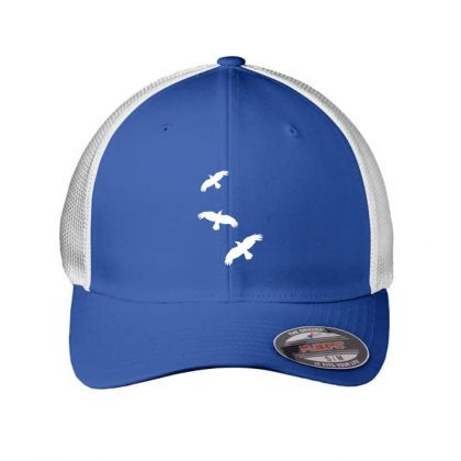 1 Color   Raven Mystical Crows Flying Birds Copy Embroidered Mesh Cap Designed By Madhatter