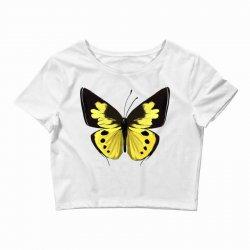 Beautiful butterfly Crop Top   Artistshot