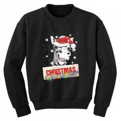 christmas zebra Youth Sweatshirt | Artistshot