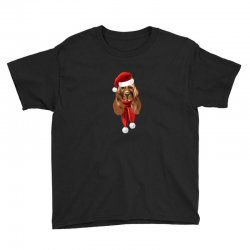 santa claus dog Youth Tee | Artistshot