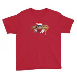 crabby christmas,hapy holidays Youth Tee | Artistshot