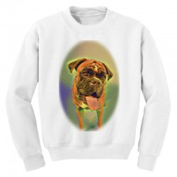 Walking the pack/array of dogdachshunds, being walked by singl Youth Sweatshirt | Artistshot