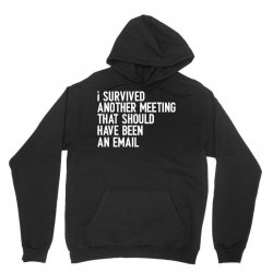 i survived another meeting that should have been an email Unisex Hoodie | Artistshot