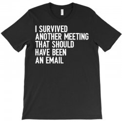 i survived another meeting that should have been an email T-Shirt | Artistshot