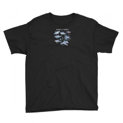 Sharks Of The World Youth Tee Designed By Rendi