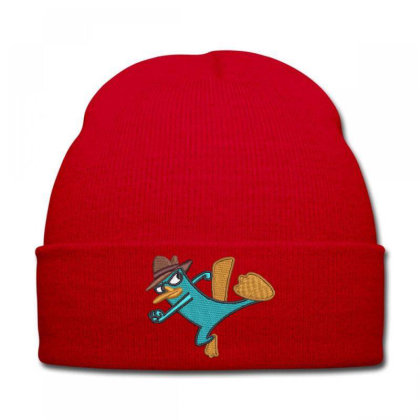 Detactive Embroidered Hat Knit Cap Designed By Madhatter