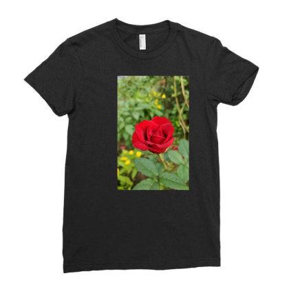 De0beab63ab43f3178cc4fe5a8cc89cc Ladies Fitted T-shirt Designed By Srinidhi
