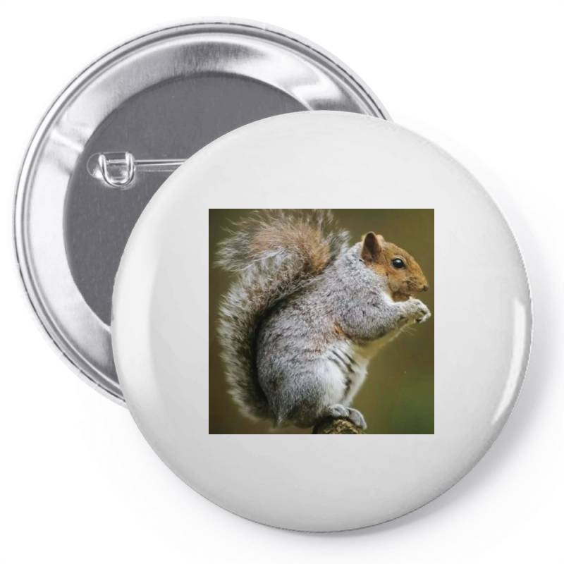 Squirrel Pin-back Button | Artistshot