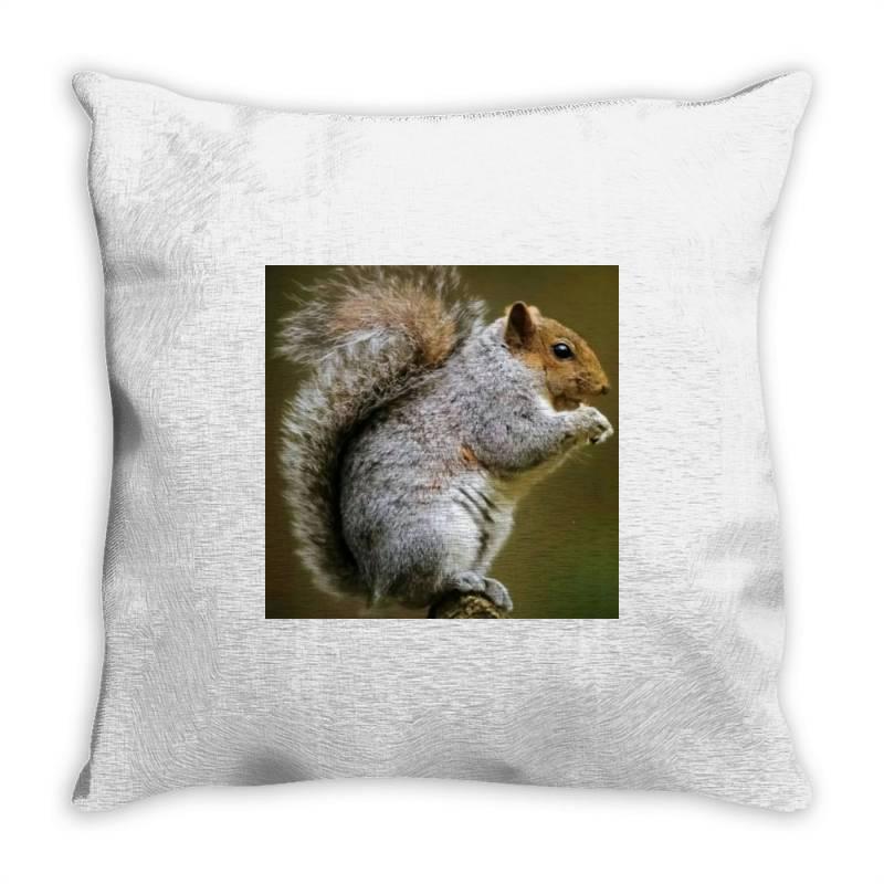 Squirrel Throw Pillow | Artistshot