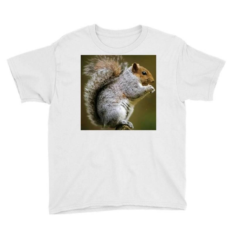 Squirrel Youth Tee   Artistshot