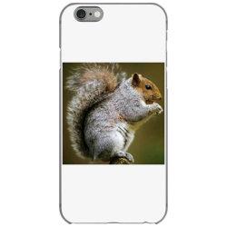 Squirrel iPhone 6/6s Case   Artistshot