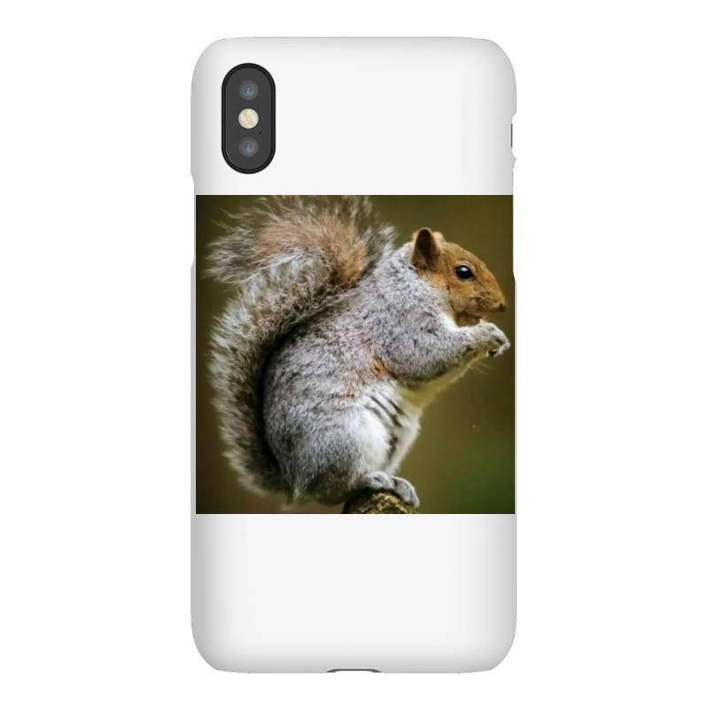 Squirrel Iphonex Case | Artistshot