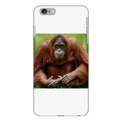 Chimpaji iPhone 6 Plus/6s Plus Case | Artistshot