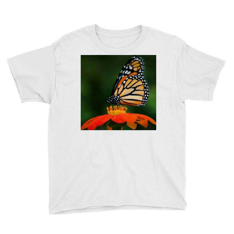 Butterflies Youth Tee   Artistshot