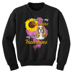 cavalier king you are my sunshine Youth Sweatshirt | Artistshot