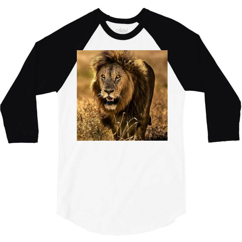 Lion 3/4 Sleeve Shirt | Artistshot