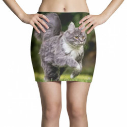 Cat Mini Skirts | Artistshot