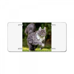 Cat License Plate | Artistshot