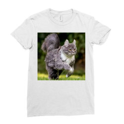 Cat Ladies Fitted T-Shirt | Artistshot