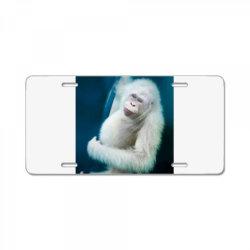 Albino orangutan License Plate | Artistshot