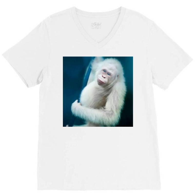 Albino Orangutan V-neck Tee | Artistshot