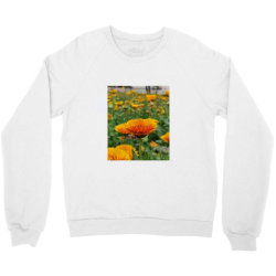A.k Crewneck Sweatshirt | Artistshot