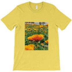 A.k T-Shirt | Artistshot