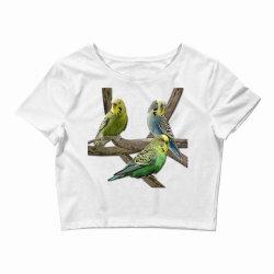 bird pet budgie parrot animals Crop Top   Artistshot