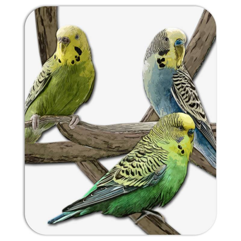 Bird Pet Budgie Parrot Animals Mousepad   Artistshot