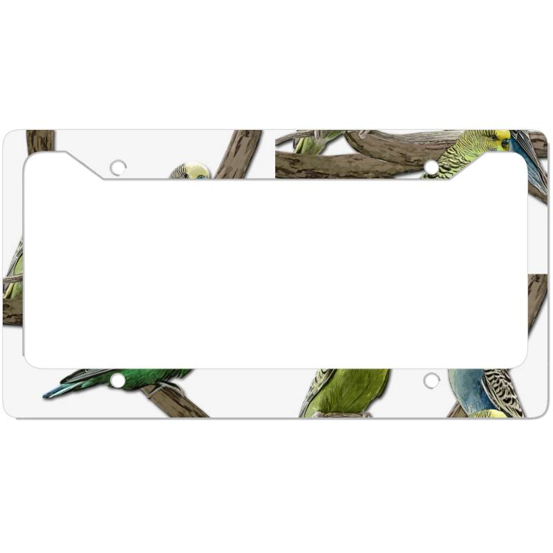 Bird Pet Budgie Parrot Animals License Plate Frame | Artistshot