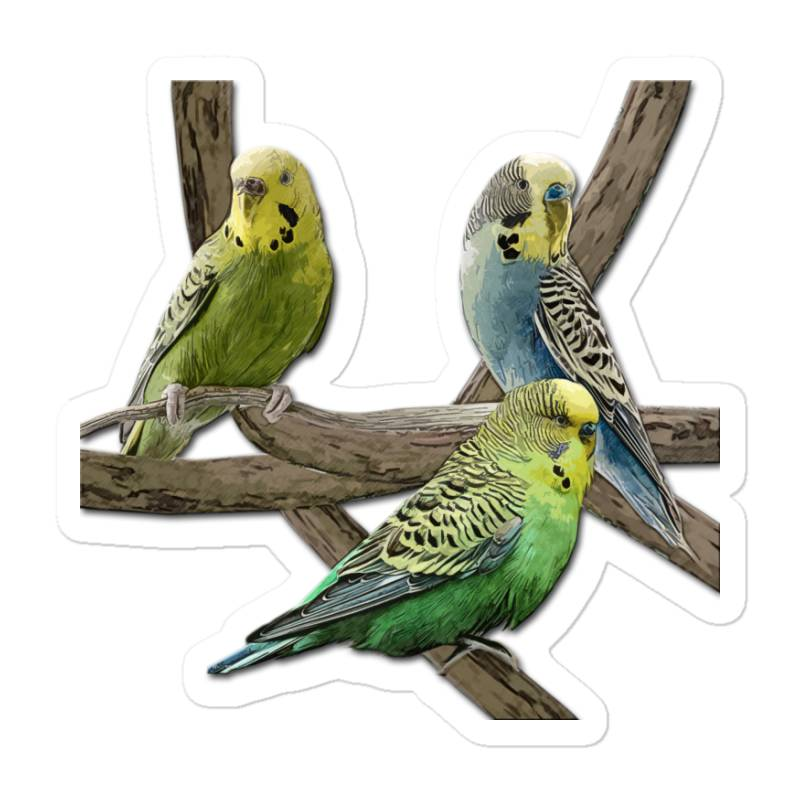Bird Pet Budgie Parrot Animals Sticker | Artistshot