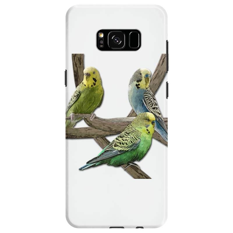 Bird Pet Budgie Parrot Animals Samsung Galaxy S8 Case | Artistshot