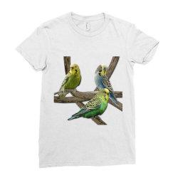 bird pet budgie parrot animals Ladies Fitted T-Shirt   Artistshot