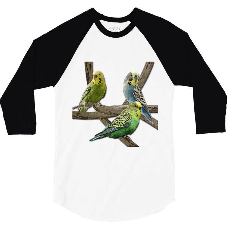 Bird Pet Budgie Parrot Animals 3/4 Sleeve Shirt | Artistshot