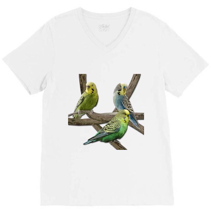Bird Pet Budgie Parrot Animals V-neck Tee | Artistshot