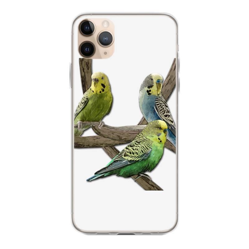Bird Pet Budgie Parrot Animals Iphone 11 Pro Max Case | Artistshot