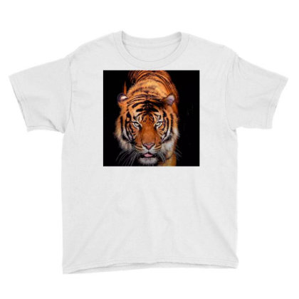 Tiger Youth Tee Designed By Vj4170