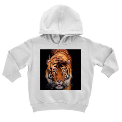 Tiger Toddler Hoodie Designed By Vj4170