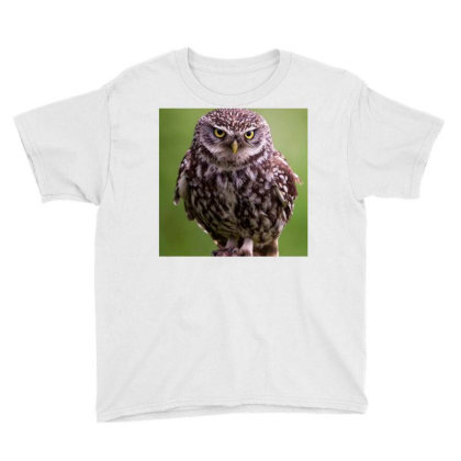 Owls Youth Tee Designed By Vj4170