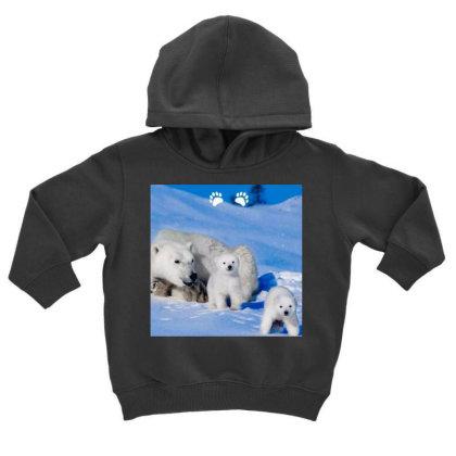 Bears Toddler Hoodie Designed By Vj4170