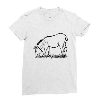 Donkey Eating Ladies Fitted T-shirt Designed By Dirjaart