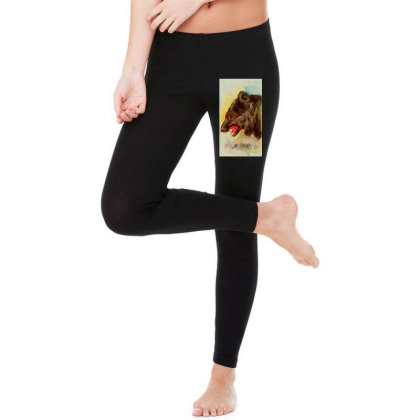 Bear Picture Legging Designed By Estore