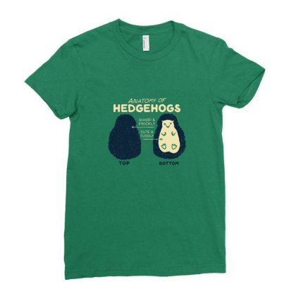 Anatomy Of Hedgehogs Ladies Fitted T-shirt Designed By Gaya