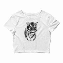 Tiger Crop Top   Artistshot