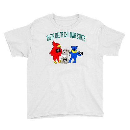 Theta Delta Chi Iowa State Design Tri Blend T Shirt Youth Tee Designed By Blackstars