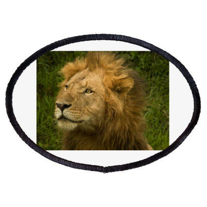 Lion King Oval Patch Designed By Jigar3998