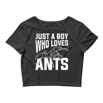 Just A Boy Who Loves Ants Ant Keeper Crop Top Designed By G3ry