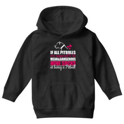 All Pitbulls Are Supposed To Be Mean Dog Lover Youth Hoodie Designed By Vip.pro123