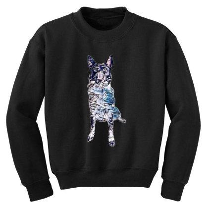 Funny Photo Of A Large Austra Youth Sweatshirt Designed By Kemnabi