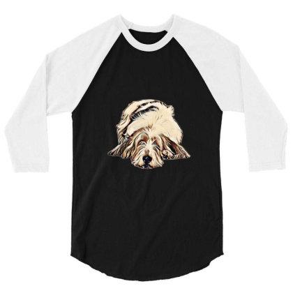 Cute Large Basset Hound And Bying Fla 3/4 Sleeve Shirt Designed By Kemnabi